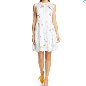 🆕 Ted Baker Aleksa Fortune Fit & Flare Dress